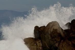 Let the sea roar