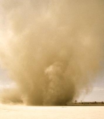 Mojave Dust Devil